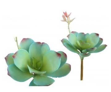 Artificial Succulent Flower in Green. By PTMD Collection®
