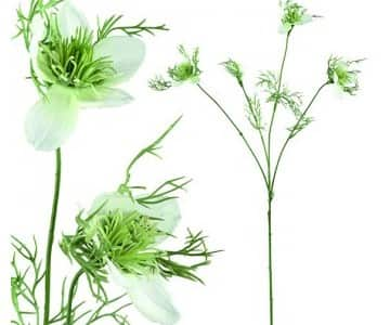 Artificial White Nigella Flower (4 Flowers). By PTMD Collection®