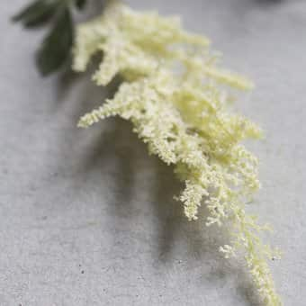'Astilbe' faux flower, Cream (61cm)