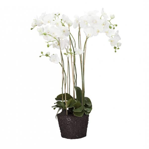 'Flora' Orchid, hypoallergenic artificial plant, presented in White & Green. By Lene Bjerre of Denmark