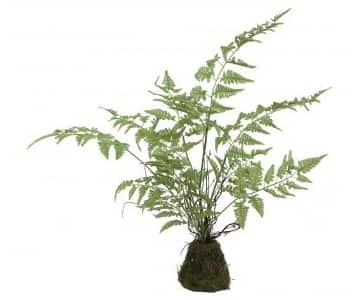 Hand made Artificial Fern Plant, with leaves, in clod. By PTMD Collection®