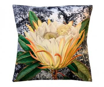 Velvet 'Yellow Protea' Cushion, with Duck down filling (optional), by Vanilla Fly of Denmark