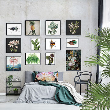 Wall Art & Frames